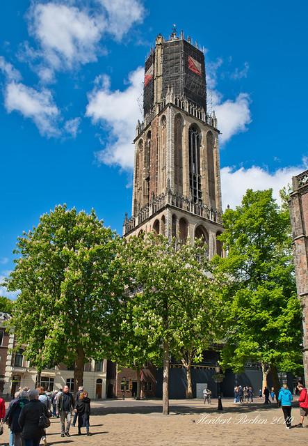 DSC01986.jpeg - Utrecht (NL)