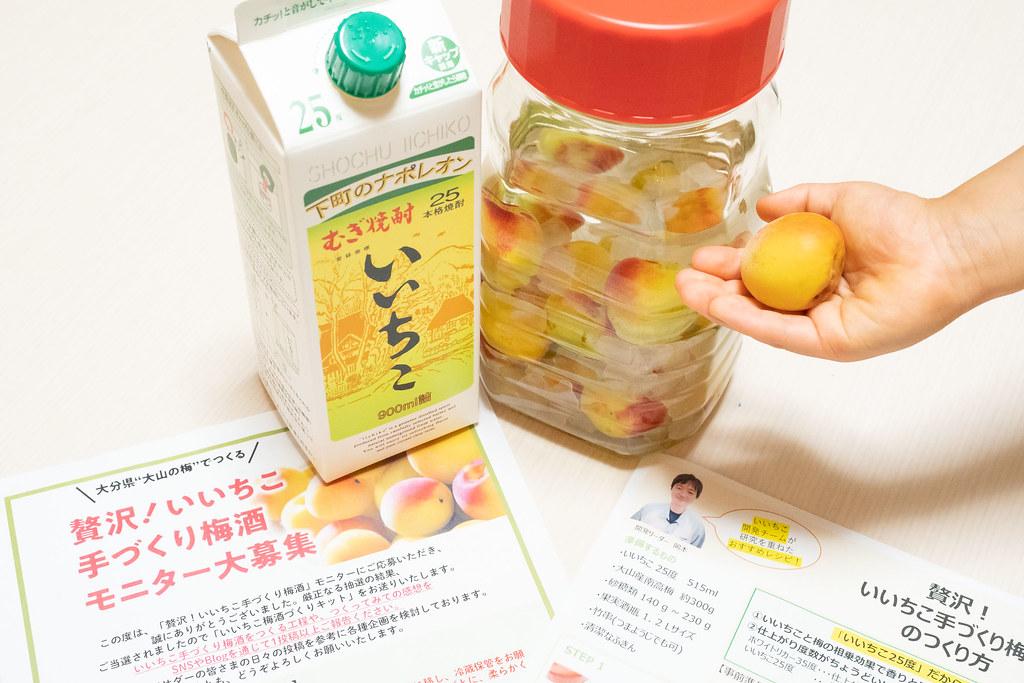 iichiko_umeshu-22
