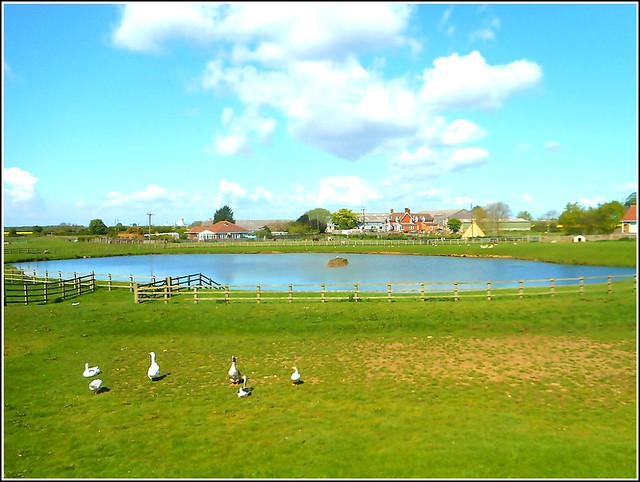 Rural View ...