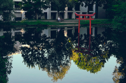 leicaxvario people woman park pond waterreflection water torii silence peaceful evening summer aoi peaceaward world100f mundane sacred