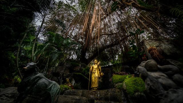 The Golden Mount Temple - Bangkok