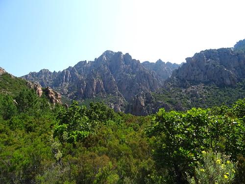Monte Sordu depuis le plateau de cistes/bruyères en vue de Punta Russa (761m)