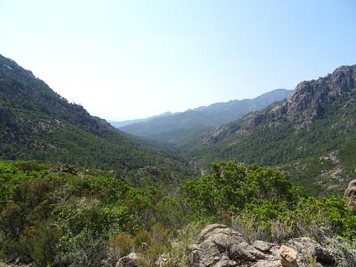 Dans la descente au retour du chemin de Paliri :  la vallée Carciara/Figa Bona vers l'aval