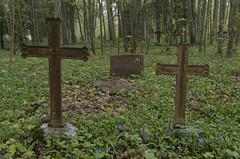 Grīvas kapos, 12.05.2019.