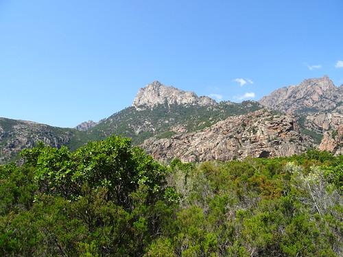 Face Est de Punta Bunifazinca depuis le plateau de cistes/bruyères en vue de Punta Russa (761m)