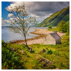 North shore of Loch Linnhe