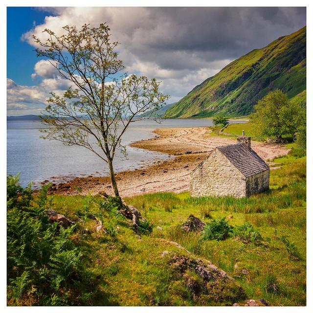 North shore of Loch Linnhe