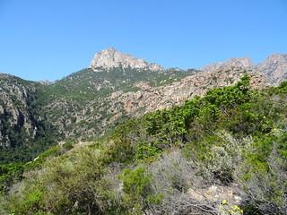 Dans la montée du chemin de Paliri : Punta Bunifazinca face Est