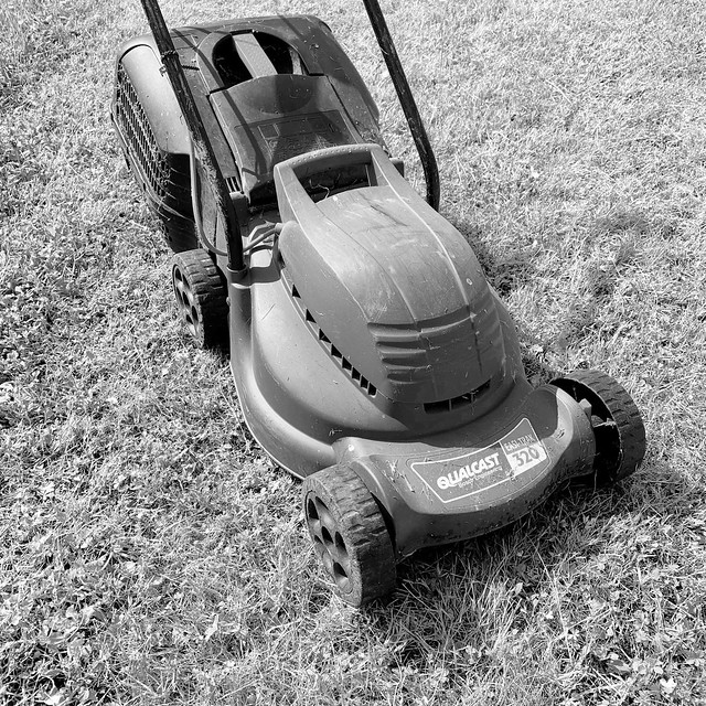 Mowed the lawn today