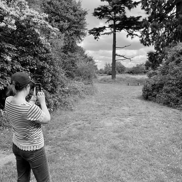 Photographing the bench