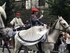 Cantinera de caballería