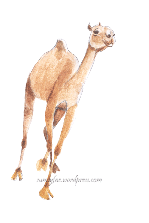running camel watercolour sketch