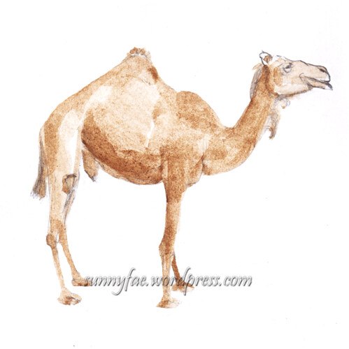 watercolour sketch of a camel