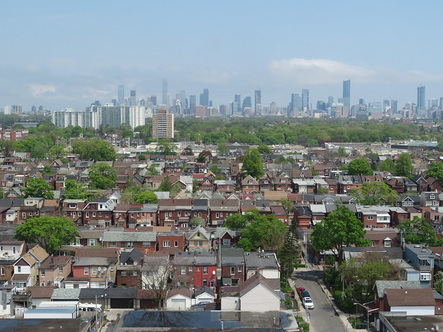 Over Toronto's tree canopy and low rise neighbourhoods