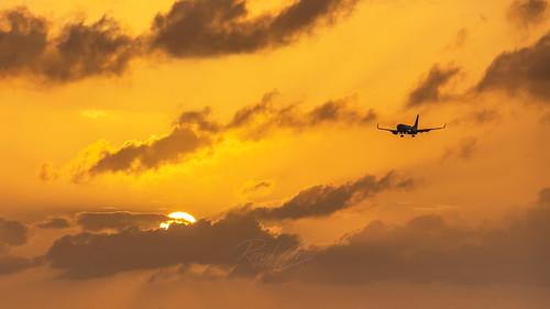 hou khou houston htx htown houstontx houstonhobby airplane jet boeing boeing737 737 houstontexas texas tx canon 80d raulcano swapic southwestair southwestairlines plane