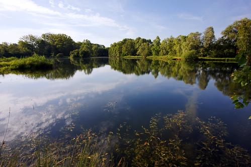 Episy fish pond