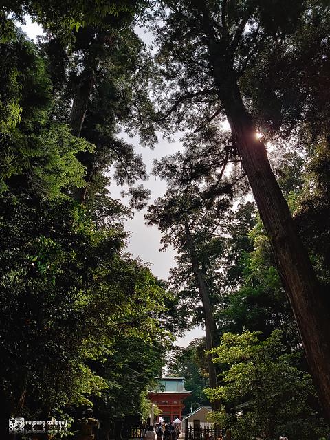 攝影師拍照手機筆記:Sony Xperia 1 | 101