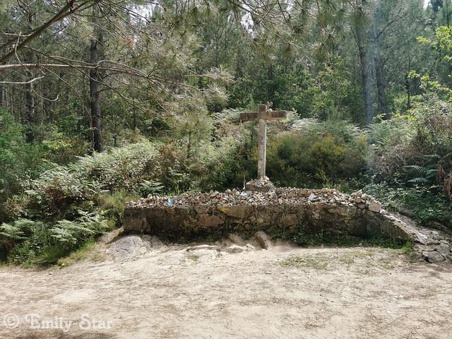 Camino Portugues-121320