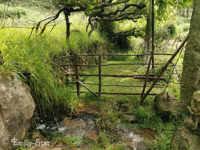 Camino Portugues-102722