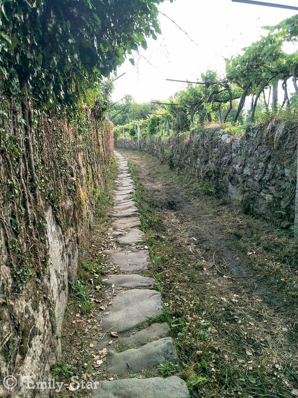 Camino Portugues-065311
