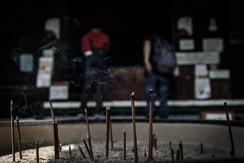 東大寺別院阿弥陀寺あじさい祭り 2019 #2ーAmida-ji Temple Hydrangea Festival 2019 #2