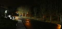 Astigarraga (Guipuzcoa, País Vasco, Es) – Visión nocturna