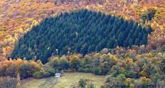 Sireix (Val d'Azun, Hautes-Pyrénées, Fr) – L'automne au ponant.