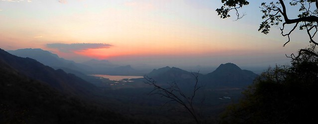 Palani Hills - Western Ghats