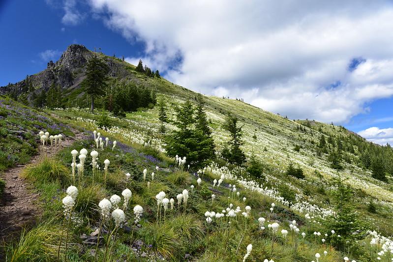 Coffin Mountain Hike