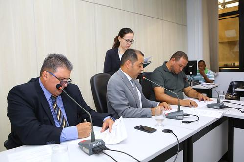 20ª Reunião  Ordinária -  Comissão de Meio Ambiente e Política Urbana