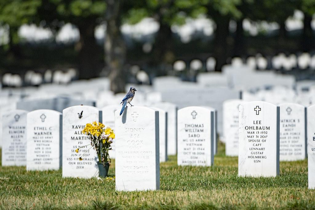 Arlington National Cemetery, Section 60