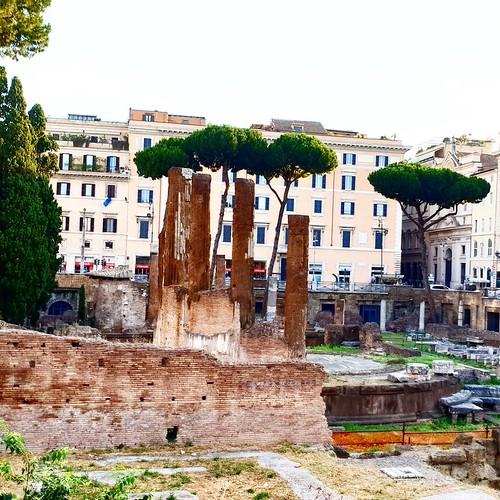 Roma: area archeologica di Largo Argentina