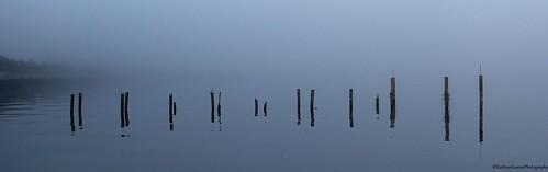canon florida kathrynlouise fog sanford lakemonroe stjohnsriver volusiacounty pilings marina sanfordmarina seascape waterscape landscape sunrise roberthunterlyrics gratefuldeadlyrics