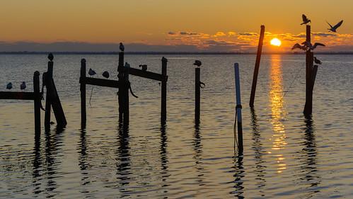 sunrise dawn tuckertonbay tuckertonnj