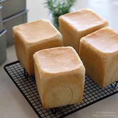 ローズマリー酵母の全粒粉食パン 20190625-DSCT7409 (3)