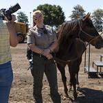County of Santa Clara, Animal Services Center