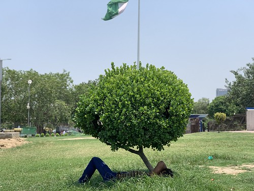 City Hangout - Plant's Shade, Palika Bazaar Park
