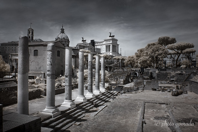 Roma -  Columns on the Forum Romanum