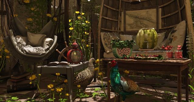 Eclectic Garden.....