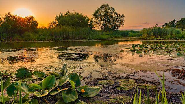 Oxbow lake 3