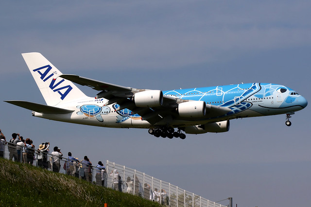 All Nippon Airways   Airbus A380-800   JA381A   Flying Honu livery   Tokyo Narita