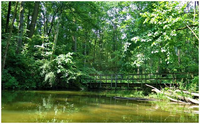 Walking bridge on the