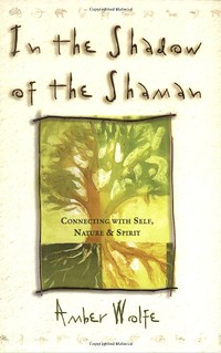 In the Shadow of the Shaman - Amber Wolfe