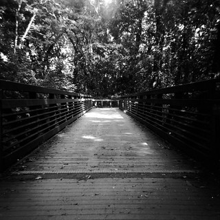 Richland Creek Greenway