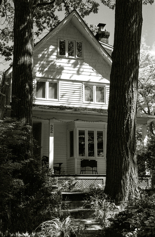 House Between the Trees