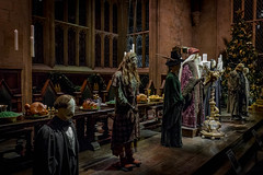 Harry Potter 2017 - 4245.jpg