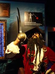 Ripley's Aquarium Of The Smokies - Gatlinburg, Tennessee (89)