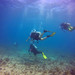 2019-07-02 Biscayne and Key Largo Reef Dives