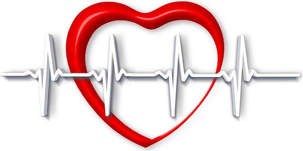 système-de-détection-cardiaque-jetson