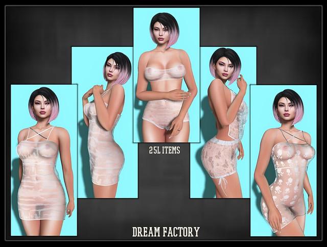 dreamfactory2